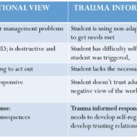 trauma view